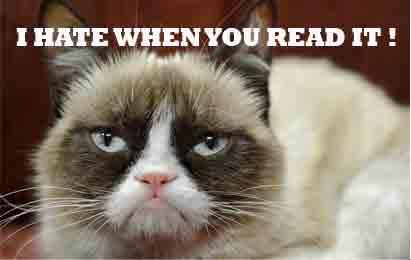 Grumpy Cat kucing terkenal di dunia tanya dokter hewan