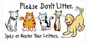 5 manfaat kastrasi anjing dan kucing tanya dokter hewan