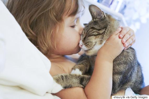Ingin tidur bersama hewan peliharaan? Ini 5 hal yang perlu dipertimbangkan
