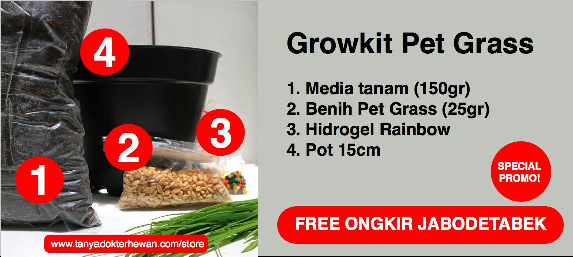 TDH Store - ?Paket Grow Kit Pet Gras